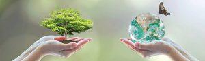 ISO 14001 - Környezetirányítási rendszer