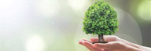 EMAS - A környezetvédelmi vezetési és hitelesítési rendszere