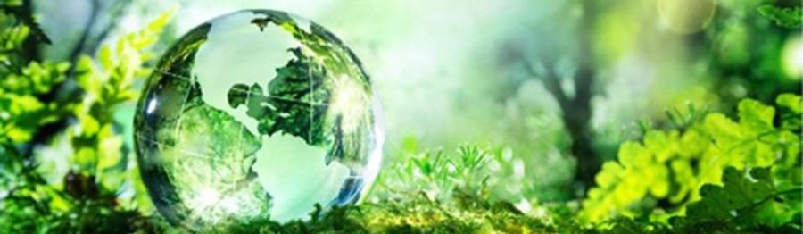 környezeti teljesítménymutató